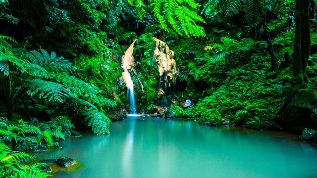 Vodopády na Azoroch.jpg